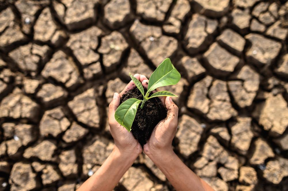 Réunion de préparation sur la COP26